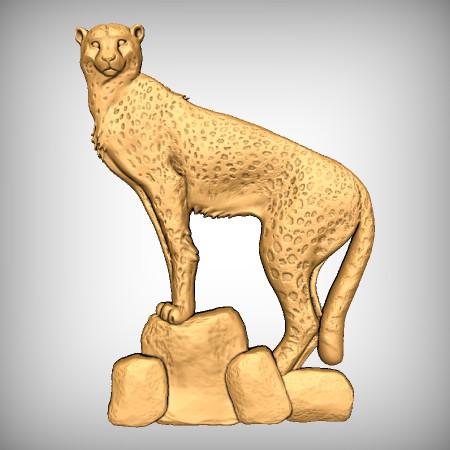 Cheetah CNC Model