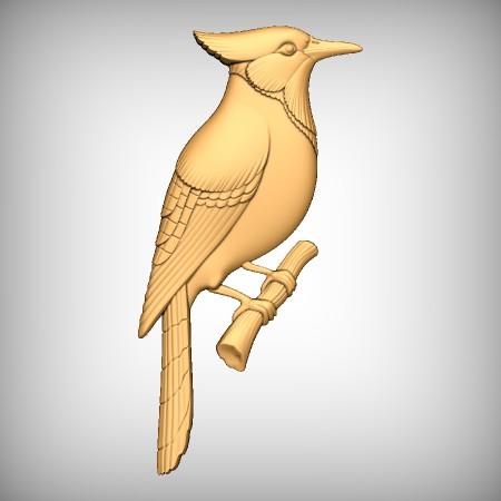 Bird CNC Model