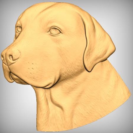 Dog CNC Model